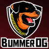 Profile picture of BummerOG