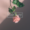 Profile picture of kaytaym018