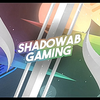 Profile picture of ShadowabYT