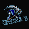Profile picture of Blak3eng