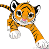 Profile picture of DonTiger00