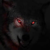Profile picture of Kaosxwolf