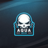 Profile picture of iAquaCSGO