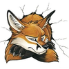 Profile picture of NamtrixTheFox
